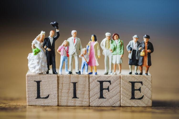 LIFEのウッドキューブと家族のフィギュア